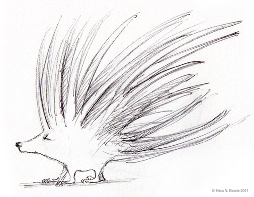 Cartoon Sketch of a Porcupine